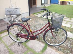 ブログDSCF3567